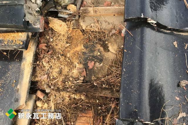 富山市雨漏り修理 瓦しめ直しd.jpg