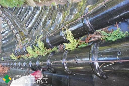 屋根のすんば、落ち葉掃除 立山町神社2.jpg