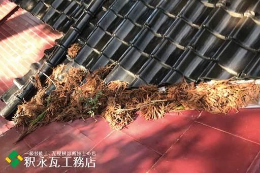 屋根のすんば、落ち葉掃除 立山町神社3.jpg