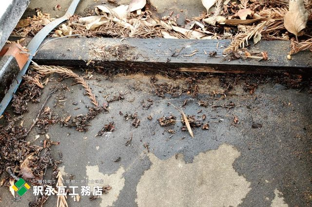 富山市雨漏り修理 瓦屋根現場調査2.jpg
