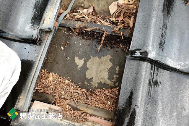 富山市雨漏り修理 瓦屋根現場調査1.jpg
