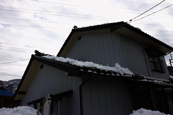http://shakunaga.jp/report/IMG_1735.JPG